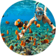 Egypt tours | Sharm El Sheik