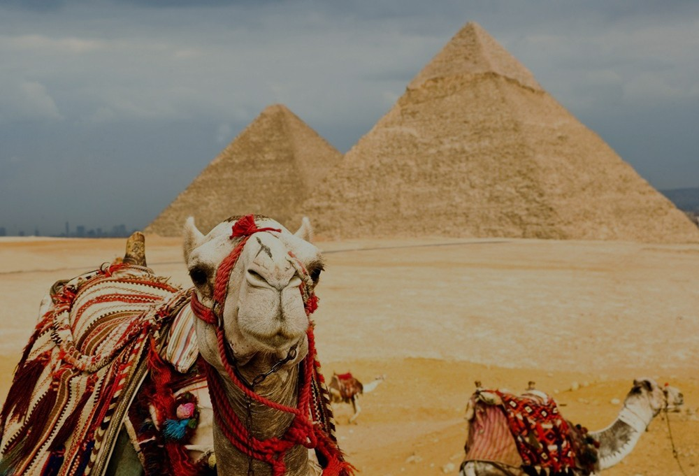 Two Day Tour of Cairo and Alexandria